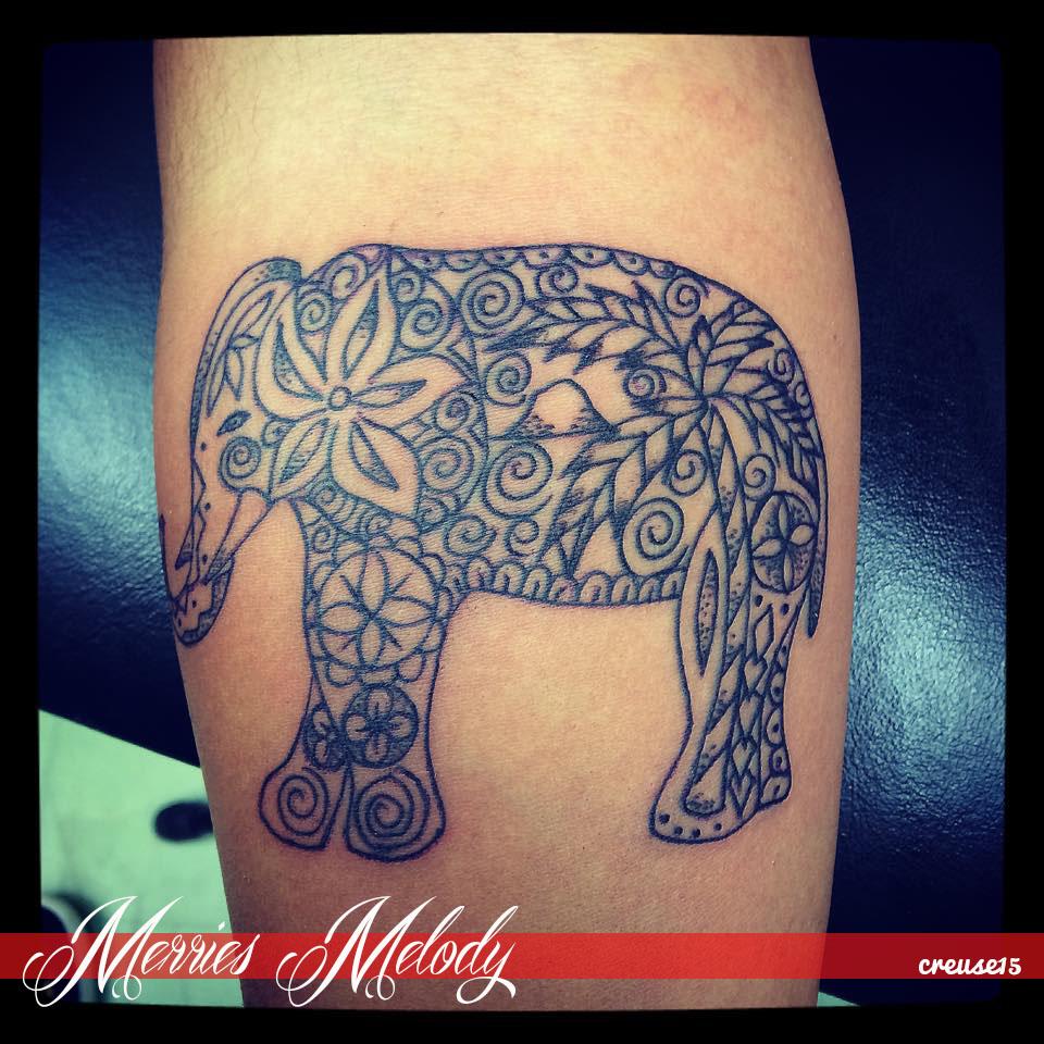 elephantindianpalm